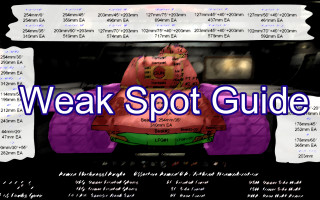 Weak_Spot_Guide_Picture